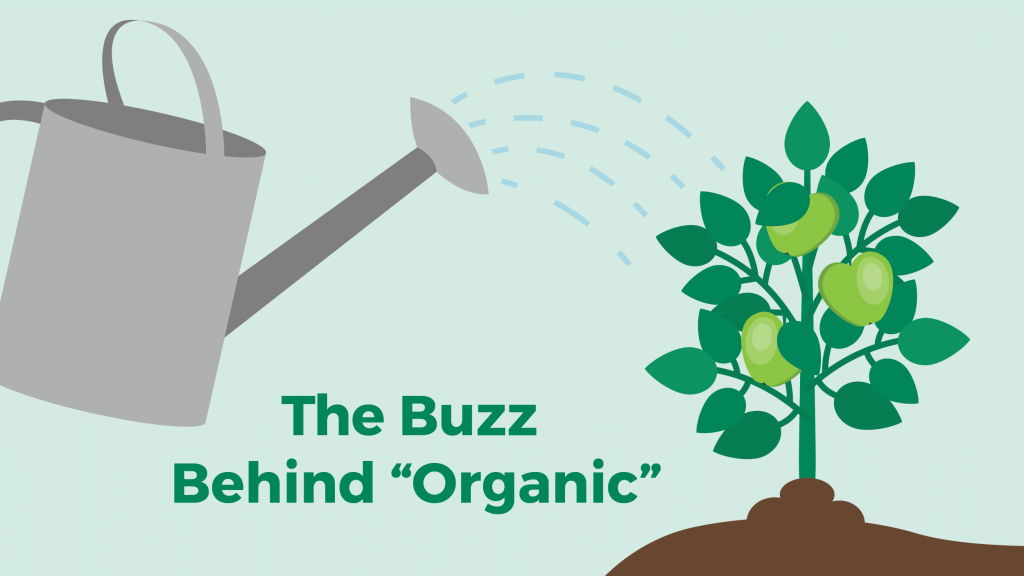 "cartoon-like image depicting a watering can and an apple tree with the words ""The Buzz Behind 'Organic'"""
