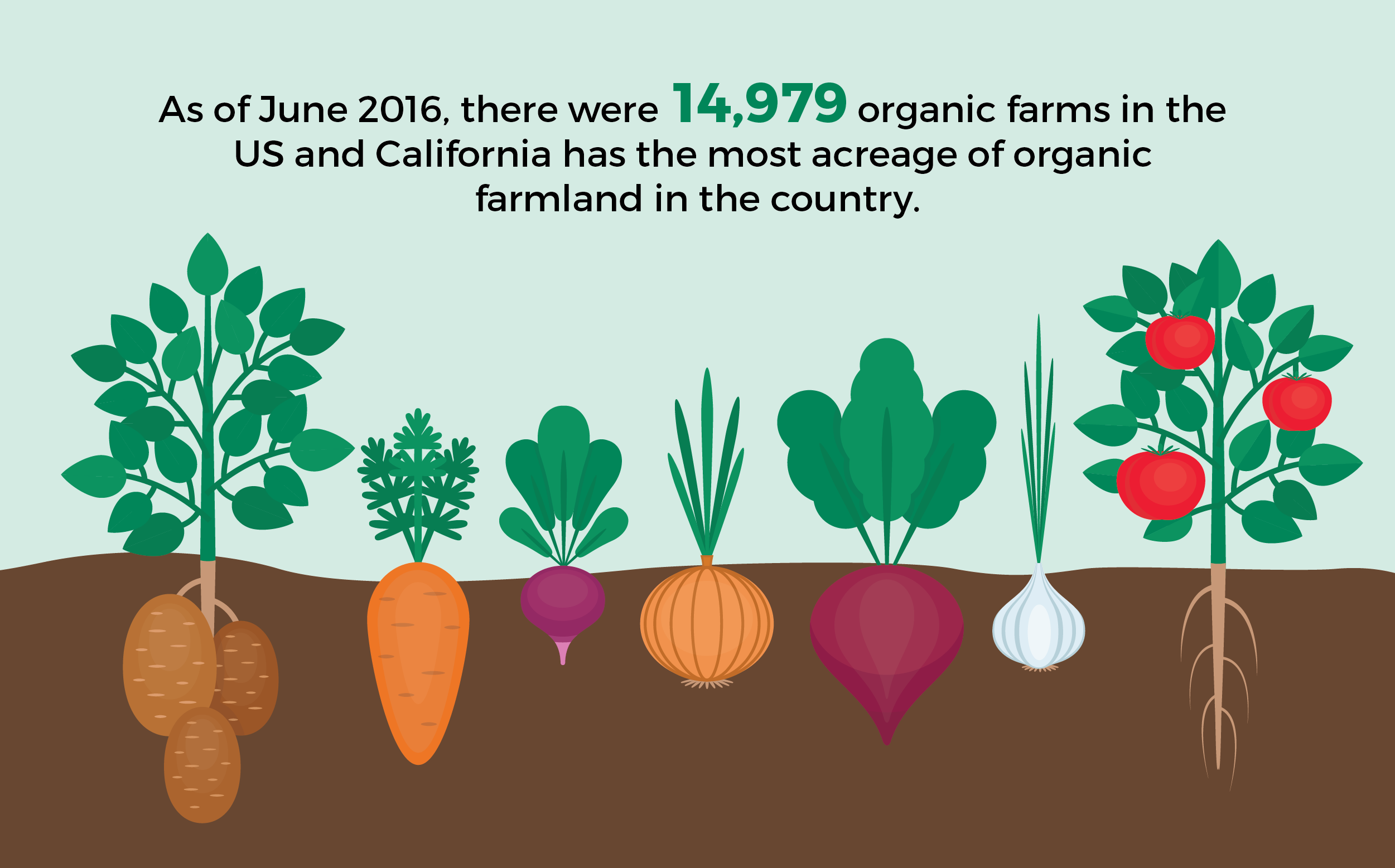 an infographic explaining that in 2016 there were 14,979 organic farms in the U.S., with California the state with the most organic farmland acreage