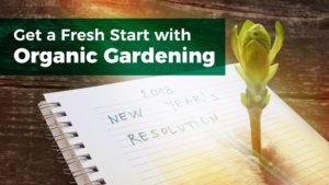 Get a Fresh Start with Organic Gardening