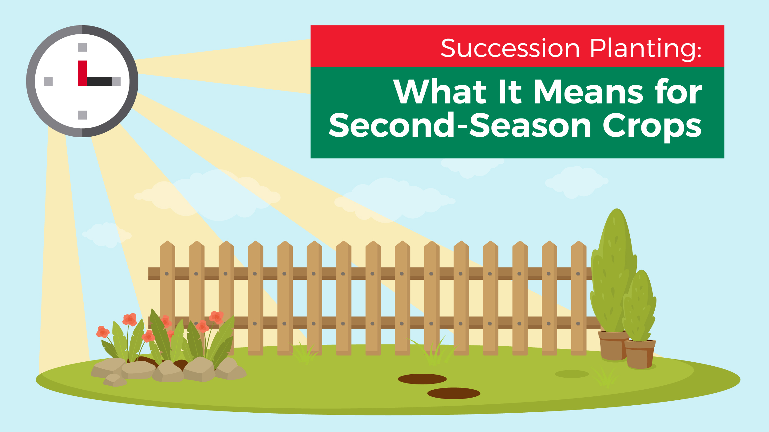 succession planting for second-season crops | jobe's gardening