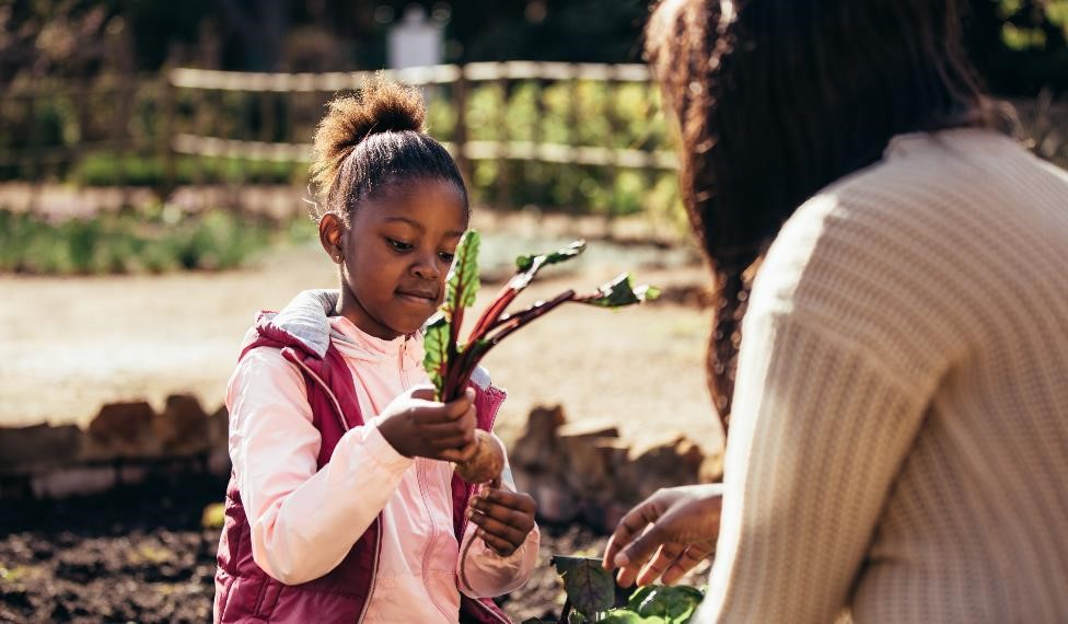 Mental and Physical Benefits of Gardening With Your Kids