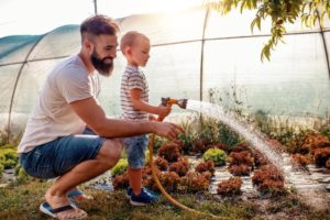 Letting It Sink In: How to Water All the Plants In Your Garden
