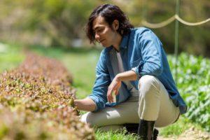 Warm-Weather Gardening: When Should I Plant?