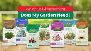 Which Soil Amendment Does My Garden Need?