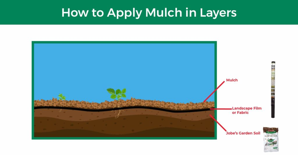 Applying mulch in layers allows you to reap multiple benefits. In this diagram, we show how to lay topsoil, landscape film, and finally mulch.