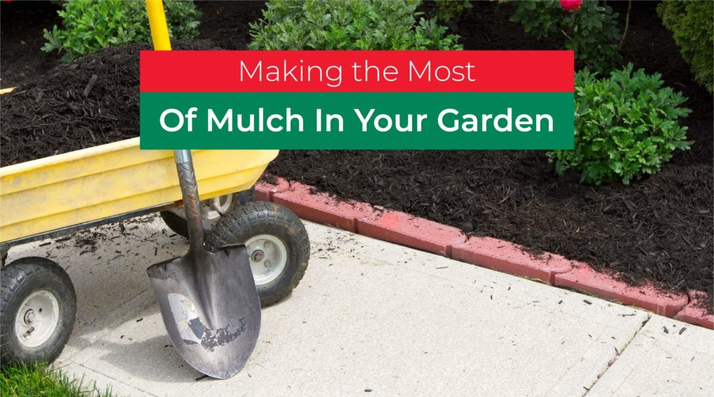 Making the Most of Mulching Methods in the Garden and Beyond