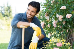 3 Things You Need for a Beautiful Rose Garden