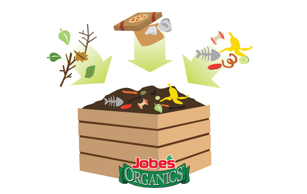 Infographic: Beginner's Guide to Composting