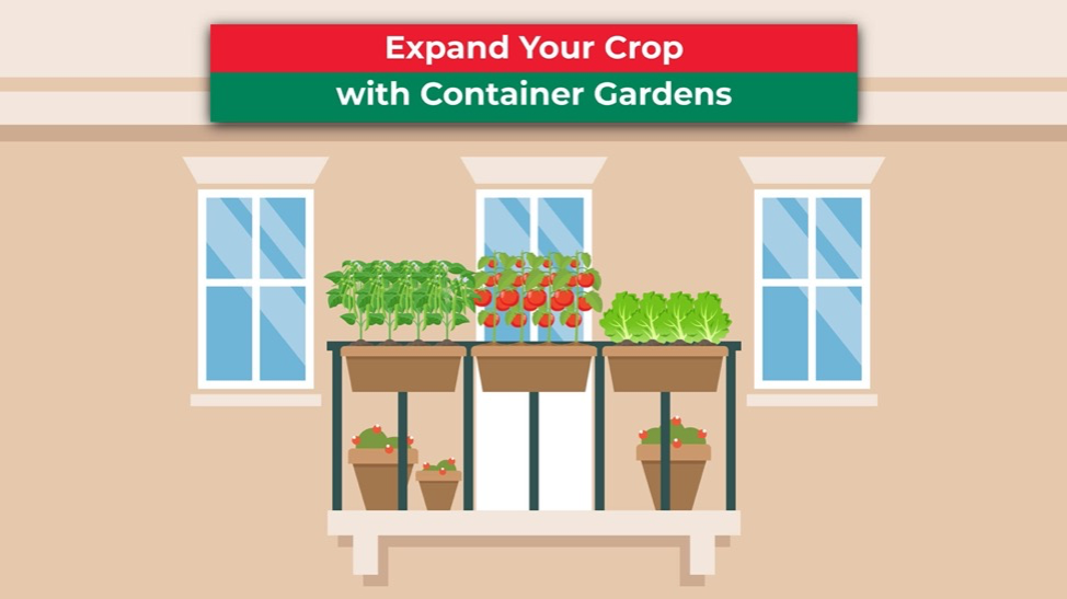 Expand Your Crop with Container Gardens