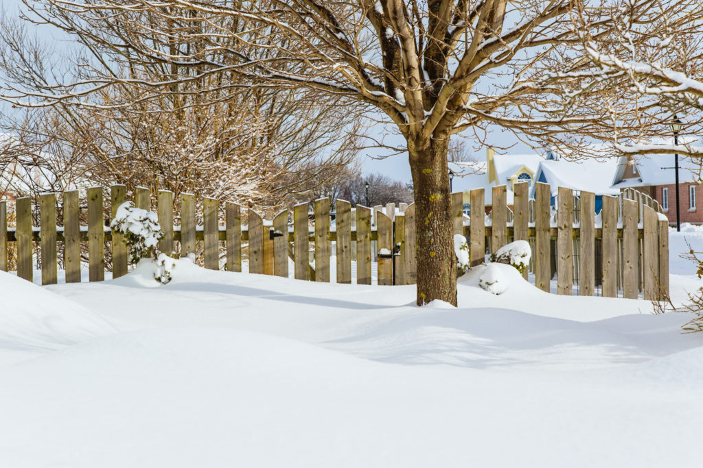 Snow Blankets: An Insulator or a Danger to Your Garden?